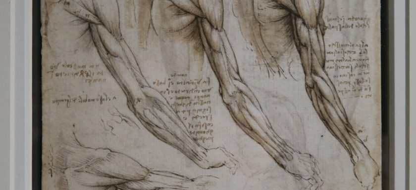 National exhibitions of Leonardo's drawings: Ulster Museum in Belfast, N. Ireland